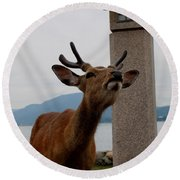 Miyajima Deer Round Beach Towel