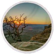 Moab Tree Round Beach Towel by Kristal Kraft