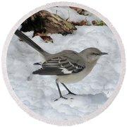 Mockingbird In The Snow Round Beach Towel