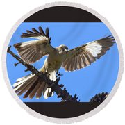 Mockingbird Sees Me I Round Beach Towel