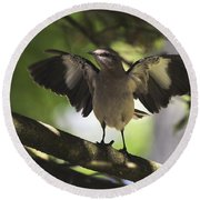 Mockingbird  Round Beach Towel by Terry DeLuco