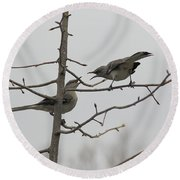 Mockingbirds Talk It Out Round Beach Towel