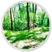 Round Beach Towel featuring the photograph Mohegan Lake Forever Green by Derek Gedney