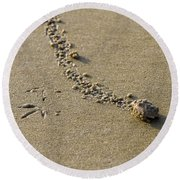 Mole Crab On The Move Round Beach Towel