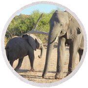 Round Beach Towel featuring the photograph Mom And Baby by Betty-Anne McDonald