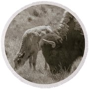 Round Beach Towel featuring the photograph Mom And Baby Buffalo by Rebecca Margraf