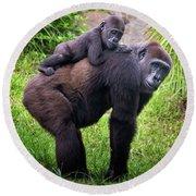 Mom And Baby Gorilla Round Beach Towel