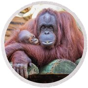 Mom And Baby Orangutan Round Beach Towel