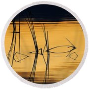 Momentary Tranquil Reflection Round Beach Towel