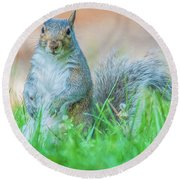 Momma Squirrel Round Beach Towel