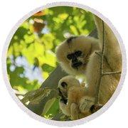 Mommy Gibbon Round Beach Towel