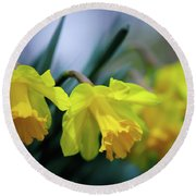 Round Beach Towel featuring the photograph Mom's Daffs by Lois Bryan
