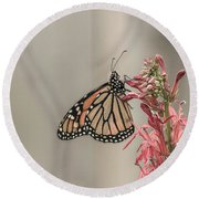Monarch And Cardinal Flower 2016-2 Round Beach Towel by Thomas Young