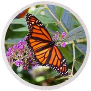 Monarch Butterfly 2 Round Beach Towel by Allen Beatty