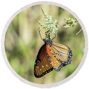 Monarch Butterfly 7504-101017-2cr Round Beach Towel