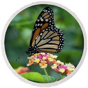 Monarch Butterfly Art II Round Beach Towel