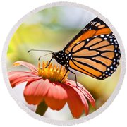 Monarch Butterfly Round Beach Towel by Chris Lord