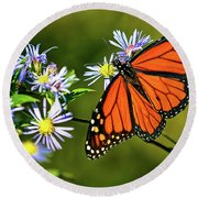 Monarch Butterfly Round Beach Towel