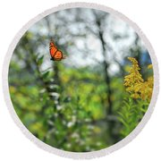 Round Beach Towel featuring the photograph Monarch Butterfly Flyaway by Kerri Farley