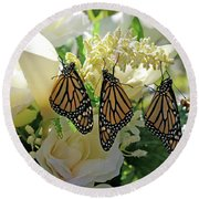 Monarch Butterfly Garden  Round Beach Towel