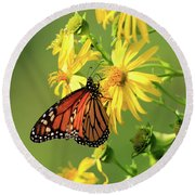 Round Beach Towel featuring the photograph Monarch Butterfly by Gary Hall