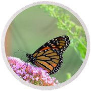Monarch Butterfly Round Beach Towel by Kathy Eickenberg