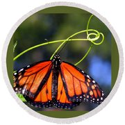 Round Beach Towel featuring the photograph Monarch Butterfly by Laurel Talabere