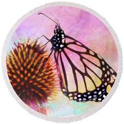 Monarch Butterfly On Coneflower Abstract Round Beach Towel