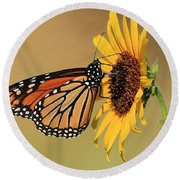 Monarch Butterfly On Sun Flower Round Beach Towel by Sheila Brown