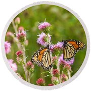 Round Beach Towel featuring the photograph Monarch Butterfly Pair Square Format by Heidi Hermes