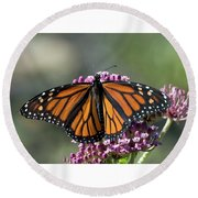 Round Beach Towel featuring the photograph Monarch Butterfly by Stephen Flint