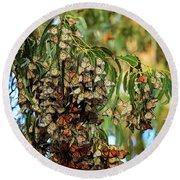 Monarch Butterlies Migration II Round Beach Towel
