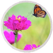 Monarch In Flight 1 Round Beach Towel
