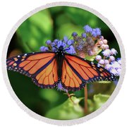 Round Beach Towel featuring the photograph Monarch In The Mist by Kerri Farley