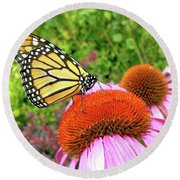 Round Beach Towel featuring the photograph Monarch On Coneflower by Randy Rosenberger