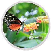 Monarch On Flower Round Beach Towel