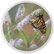 Round Beach Towel featuring the photograph Monarch On Mint 2 by Lori Deiter