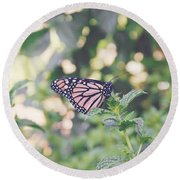 Monarch On Mint Round Beach Towel