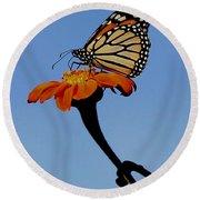 Monarch On Zinnia  Round Beach Towel