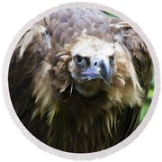 Monk Vulture 3 Round Beach Towel