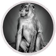 Monkey Round Beach Towel by Charuhas Images