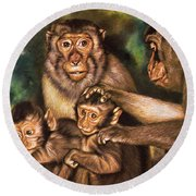 Monkey Family Round Beach Towel