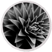 Monkey Puzzle Round Beach Towel