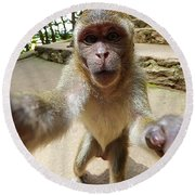 Monkey Taking A Selfie Round Beach Towel