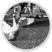 Monochrome Flapping Swan Round Beach Towel