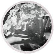 Monochrome Flora Round Beach Towel