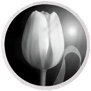 Round Beach Towel featuring the photograph Monochrome Tulip Portrait by Terence Davis