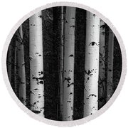 Round Beach Towel featuring the photograph Monochrome Wilderness Wonders by James BO Insogna