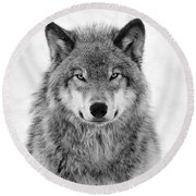 Monotone Timber Wolf  Round Beach Towel