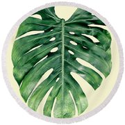 Monstera Deliciosa Round Beach Towel